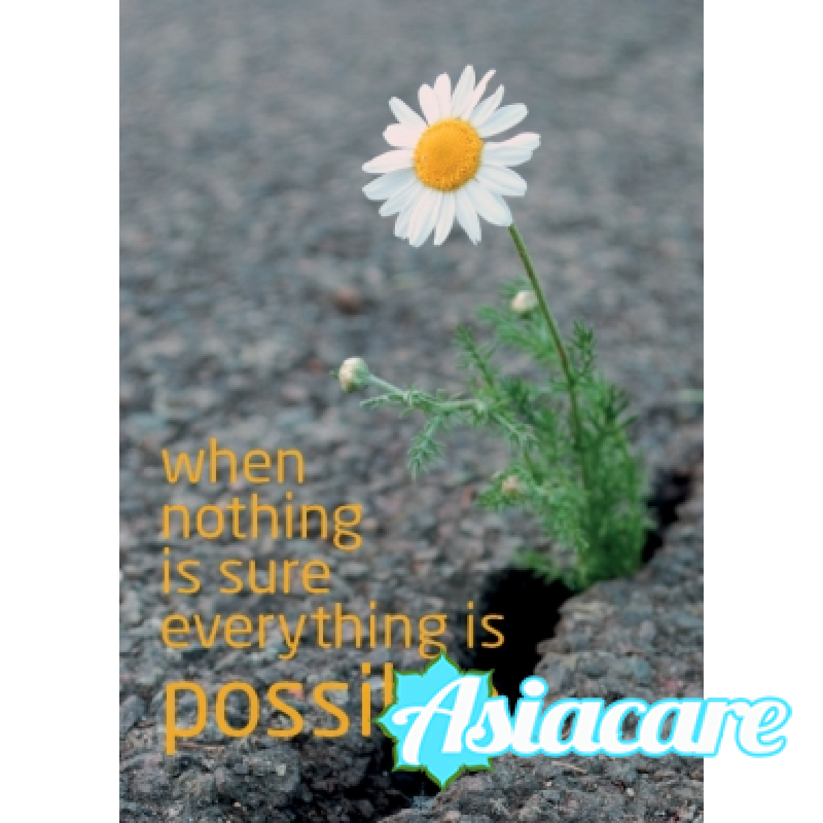 """Поздравителна картичка  """"When nothing is sure everything is possible"""""""